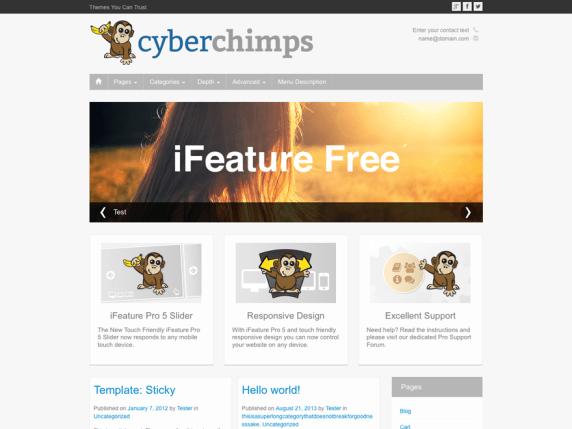 CyberChimps Responsive Pro WordPress Plugin