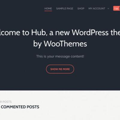 WooThemes Hub WooCommerce Themes - GPl Pulse