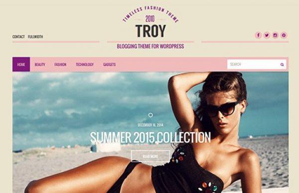 CSS Igniter Troy WordPress Theme - Gpl Pulse