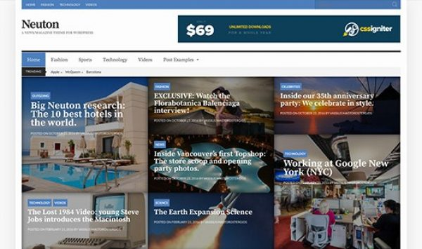 CSS Igniter Neuton WordPress Theme - Gpl Pulse
