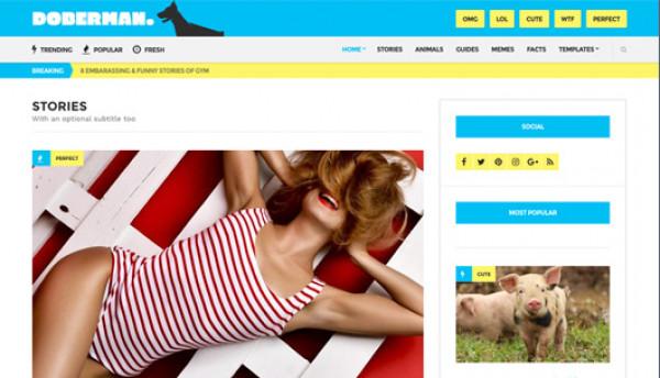 CSS Igniter Doberman WordPress Theme - Gpl Pulse