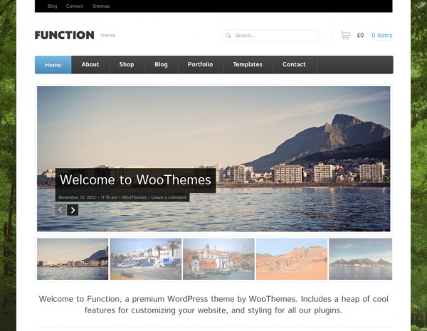 WooThemes Function WooCommerce Themes - GPl Pulse