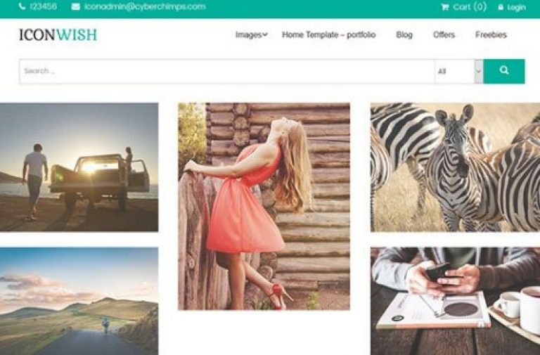 CyberChimps Iconwish WordPress Theme - Gpl Pulse