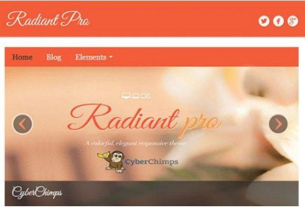CyberChimps Radiant Pro WordPress Theme - Gpl Pulse