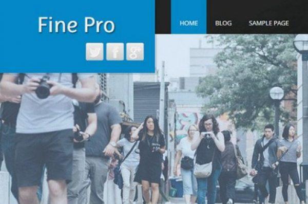 CyberChimps Fine Pro WordPress Theme - Gpl Pulse