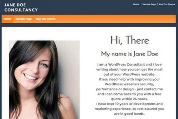 CyberChimps Responsive Pro WordPress Theme - Gpl Pulse