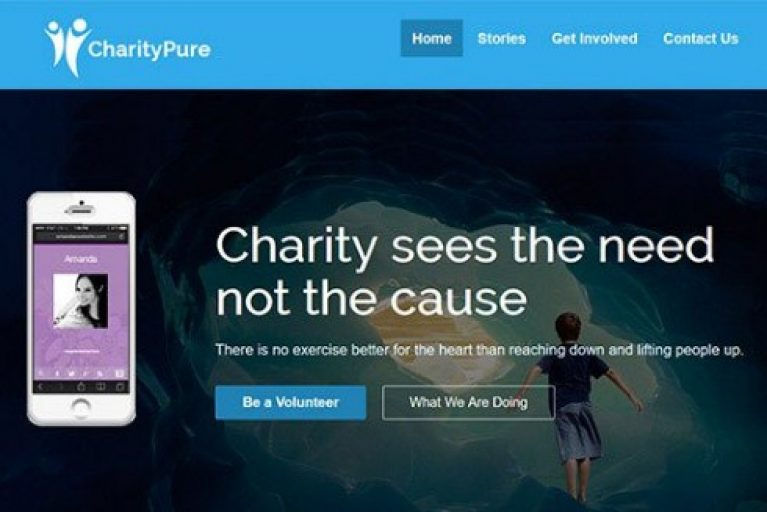 CyberChimps CharityPure WordPress Theme - Gpl Pulse