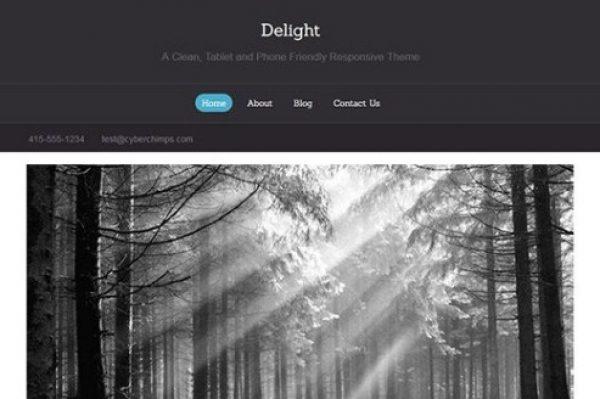 CyberChimps Delight WordPress Theme - Gpl Pulse