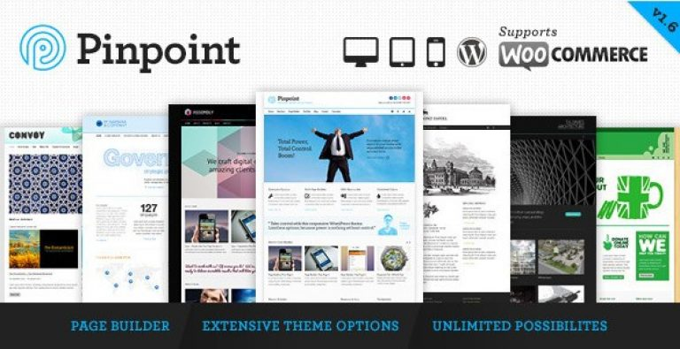 Pinpoint – Responsive Multi-Purpose WP Theme - GPl Pulse